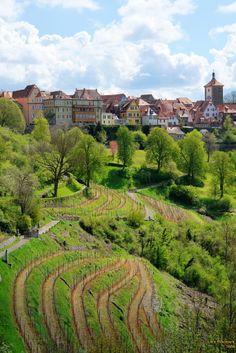 #Rothenburg #Germany #RomanticRoad  --  Rothenburg, Germany  --  The single best-preserved, walled-town in Germany.
