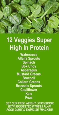 12 Veggies Super High In Protein. Get our FREE healthy weight loss ebook with suggested fitness plan, food diary, and exercise tracker. Learn about Moringa's alkaline rich, antioxidant loaded weight loss benefits that help your body detox, cleanse, increase energy, burn fat, and lose weight more efficiently. Look and feel your best fast with our high potency weight loss products. LEARN MORE #FatBurning #WeightLoss #Detox #Cleanse #Healthy #Protein #Veggies #Foods