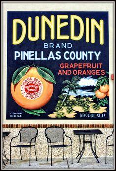 Dunedin, Florida - best freshly squeezed orange juice in the world! Winter In Florida, Old Florida, Vintage Florida, Florida Vacation, Florida Travel, Vacation Places, Florida Home, Florida Keys, Florida Beaches