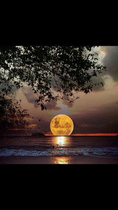 What a Beautiful Sunset Beautiful Moon, Beautiful World, Beautiful Images, Moon Pictures, Pretty Pictures, Foto Picture, Ciel Nocturne, Shoot The Moon, Photos Voyages