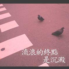 { 流浪的終點 是沉澱 }  Shot by 文青相機  By Boyen Hsiuan