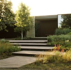 Lage trappen, kleine staphoogtevgrote tegels,,, makkelijker lopen. Beplanting leuk.