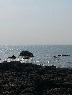 태안 바다...