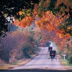 Amish Country in the fall, beautiful! The Amish live in Eastern Iowa. Amish Country, Country Roads, Amish Family, Amish Culture, Grande Hotel, Amish Community, Ontario, Beautiful Places, Beautiful Scenery