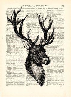 Deer wall decor art deer wall prints from Dictionary by DaWanda.com