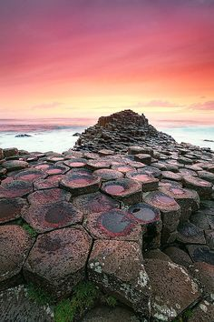 ✯ Giants Causeway, Northern Ireland