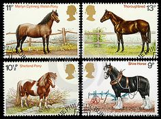 irish horse stamps | Horse Postage Stamp