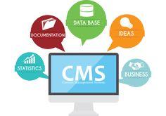 Content Management System Use Zirakpur