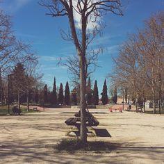 -- SIMETRÍA DE PARQUE -- | [#albertosierra_mobilephotography]