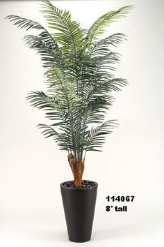 D & W Silks VSN# 114067 8' ARECA PALM IN TALL ROUND RESIN PLANTER  8' TALL