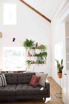 At Home with Lindsay Kujawa in Temecula, California (love the plant shelves!)