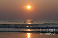 Obx Sunrise Fine Art Prints and Posters for Sale