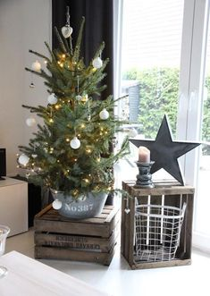 If we've convinced you enough, look at our gallery of potted Christmas tree decoration ideas below. Potted christmas trees, potted trees for christmas. Potted Christmas Trees, Noel Christmas, Simple Christmas, Winter Christmas, Christmas Crafts, Potted Trees, Minimal Christmas, Christmas Ideas, Christmas Tree Bucket