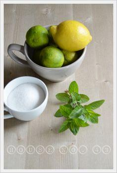"""Limmette-minze Sirup - ein Rezept von """"HouseNo43"""""""
