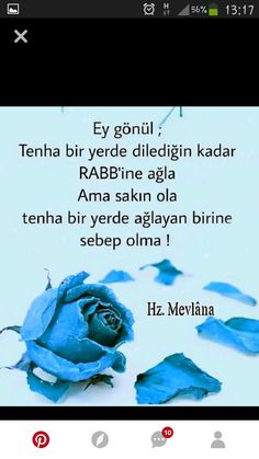 Güzel söz Cool Words, Islam, Quotes, Quotations, Quote, Manager Quotes, Qoutes, A Quotes