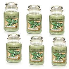 nice Yankee Candle Sage & Citrus Large Jar 22oz Candle