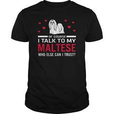 Of course i talk to my maltese who else can i trust