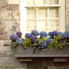 Dress up your windows with a window box like this one.