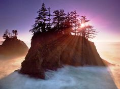"""The Coast of Southern Oregon (we apparently don't call it the """"ocean,"""" it's the """"coast"""")"""