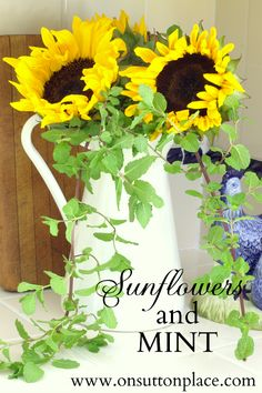 Sunflowers and Mint ~ the perfect pair for early fall kitchen decor.