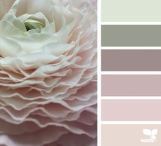 color palette - flora hues