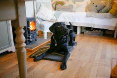 Top ten treats with a shepherds hut stove http://www.redskyshepherdshuts.co.uk/blog/2016/3/11/qb7b0oeddm1ybeatdrwj1bl12j0tu6