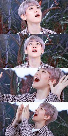 Exo Ot12, Chanbaek, Baekhyun Chanyeol, Park Chanyeol, Baekhyun Wallpaper, Exo Lockscreen, Xiuchen, Exo Members, Musical