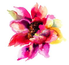 Mooie roze bloemen, aquarel schilderen photo