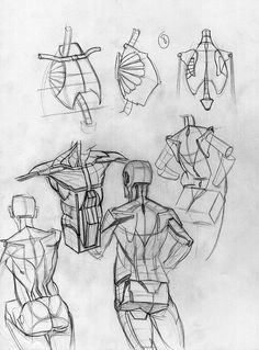 Drawing The Human Figure - Tips For Beginners - Drawing On Demand Human Drawing Reference, Human Figure Drawing, Figure Sketching, Art Reference Poses, Drawing Lessons, Drawing Tips, Human Anatomy Drawing, Anatomy Sketches, Anatomy For Artists