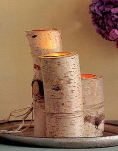 birch tree candles @Sarah Clark we would be able to make these ourselves with a drill and just put a votive in them. It's an idea would go well with your burlap.