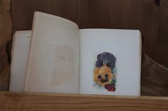 Poetry and Flower Illustrations Book c1905 PRICE REDUCED