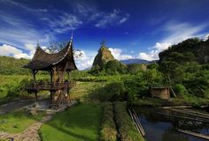 taruko in the morning , BUKITTINGGI PADANG, INDONESIA. fotografer: Rezky vixcan | www.fb.com/rezky.vixcan #Travel #Nature