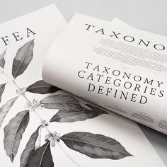 Project: Coffee Taxonomy Posters for @squareonecoffeeroasters Poster Design: @pop_and_pac Illustration: @bethemily Printing: @gunntaylorprinters Photography: @foliolio