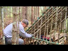Lean To Natural Shelter - Worth The Effort? - YouTube