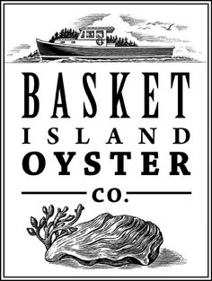 maine oyster illustration - Google Search