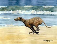 Google Image Result for http://www.hanoverareaarts.com/39/album/slides/Greyhound%20Running%20on%20Beach.jpg