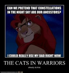 THE CATS IN WARRIORS