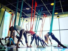 A look into a class Video Description Take a peak into one of our Aerial Yoga classes! Kundalini Yoga, Yoga Meditation, Yoga Poses, Yoga Sequences, Air Yoga, Aerial Yoga Hammock, Yoga Kurse, Yoga Equipment, Partner Yoga