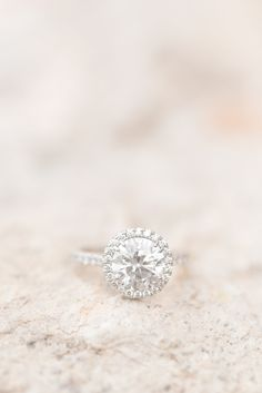 A Silverleaf Country Club engagement session in the golden glow of Scottsdale, Arizona's amazing sunset. And this stunning solitaire round diamond with a studded band and diamond halo was perfection!