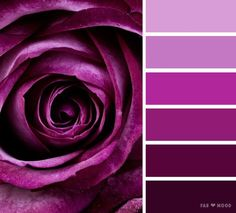 Purple rose color scheme,shades of dark puprle color palette ,color scheme ,color palette - looking for color inspiration? at fab mood you will find Purple Colour Shades, Purple Color Schemes, Purple Color Palettes, Purple Palette, Colour Pallette, Color Combos, Decoration Palette, Pintura Exterior, Design Seeds