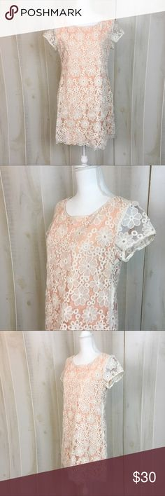 """C. Keer Peach with Lace Overlay Shift Party Dress Peachy, flirty, and fun. This Anthropologie dress has a light peach lining with floral lace overlay. Made from a cotton poly blend. Perfect for Valentine's day! Good condition, but small spot on bust (pictured.) Approximate measurements lying flat: 19"""" bust, 33"""" length (Slip) 30083 Anthropologie Dresses Mini"""