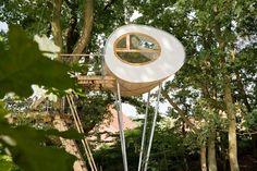 Amazing tree house, the side looks like an egg-shape - by architecture baumraum / Baumhaus