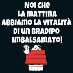 Bradipo imbalsamato Funny Photos, Funny Images, Peanuts Quotes, Good Morning Good Night, Peanuts Gang, Illustration Sketches, Smallville, Funny Comics, Vignettes