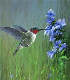 Birds I: This is a great program for those of you who love wildlife – particularly birds. There will be eight (8) paintings required for this program: Seven (7) bird paintings will be designed by Jerry and one bird painting designed by the student.