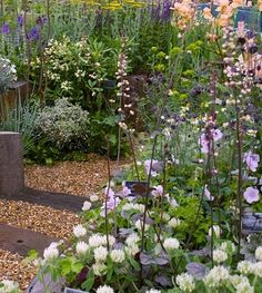 5 things to do during the Chelsea Flower Show | What to do in London - Red Online