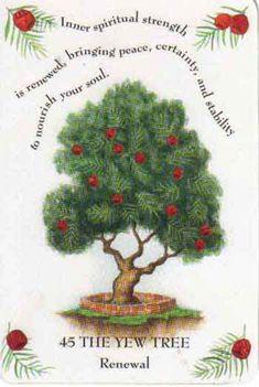 poplar tree horoscope