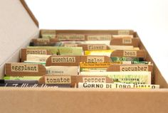 seed-organization-box-03