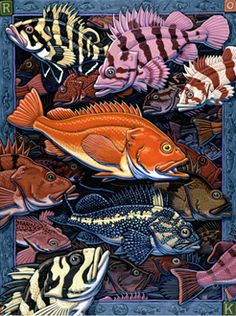 Rockfish by Ray Troll. There are 50 species in the North Pacific (an artist's delight).