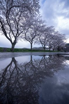 Kinchakuda, Saitama, Japan | photo by Kouji Tomihisa