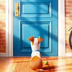http://polyprisma.de/wp-content/uploads/2015/06/The-Secret-Life-Of-Pets-Cover.jpg The Secret Life Of Pets - Trailer http://polyprisma.de/2015/the-secret-life-of-pets-trailer/ Jedes Herrchen und Frauchen hat sich schon gefragt, was die goldigen Lieblinge so veranstalten, während man aus dem Haus ist. Illumination Entertainment versorgt uns nächsten Sommer mit der Film gewordenen Antwort auf alle Fragen, die wir nie haben wollten: The Secret Life Of Pets – Das g...